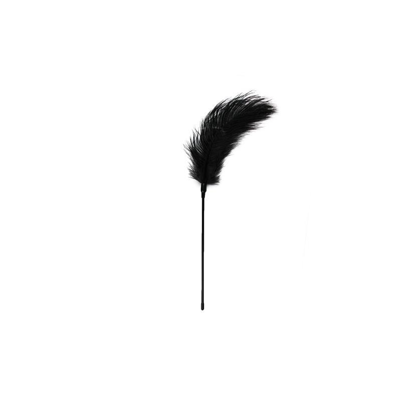 Plumero Negro - Largo